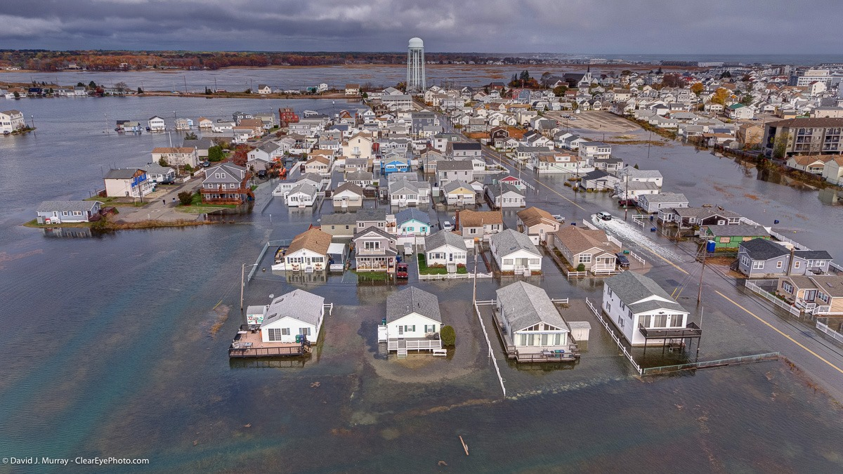 Photo of PHOTOS: 2019 King Tide